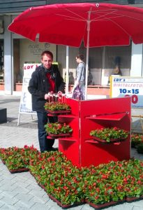 2013: Ratskandidat Jan Pfeifer dekoriert die Blumengrüße mit SPD-Fähnchen