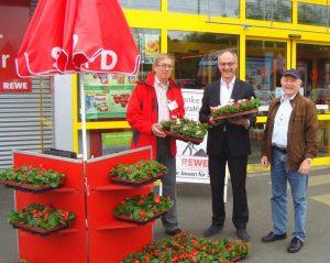 Eisbegonien verteilen Klaus Bauer, Detlef Ehlert und Adi Franke